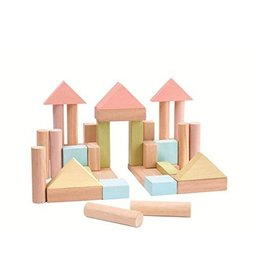 Plan Toys 40 unit block set