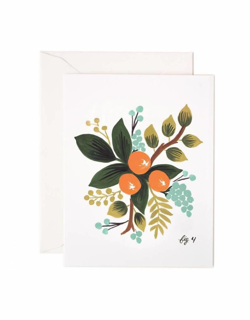 Rifle Paper Co. Boxed Set Botanical