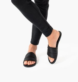 $3,378 MXN Tkees Caro Black Sandals