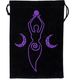 Pouch - Moon Goddess Embroidered Velvet