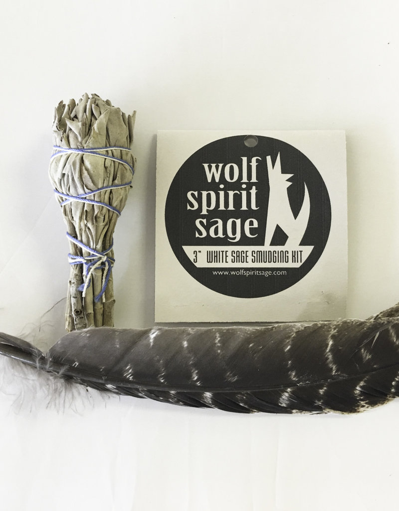 3 inch White Sage with Feather - 6579FE3