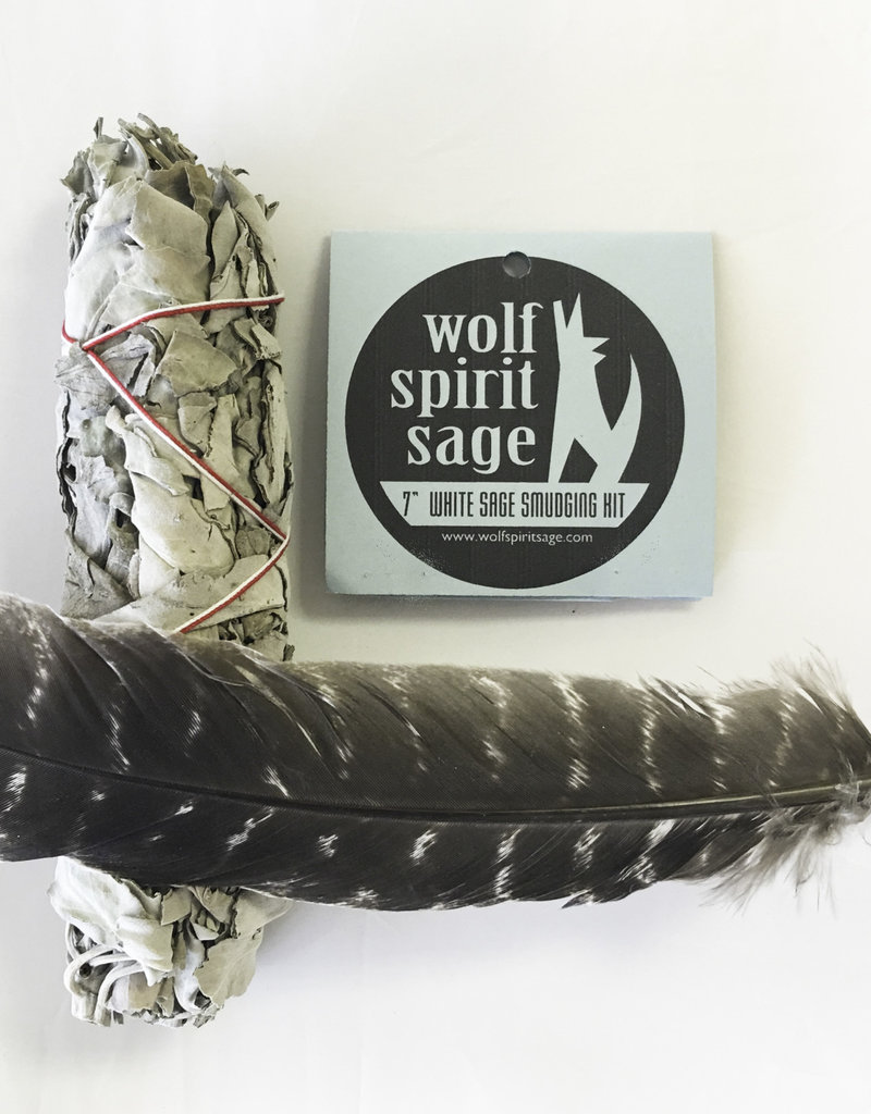 7 inch White Sage with Feather - 6579FE7