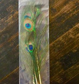 Feather - Peacock Eye 5 Pkg. - KA-FEA-PEAE