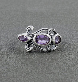 Amethyst Sterling Silver Ring (Size 8) - R-21042-06-34-2