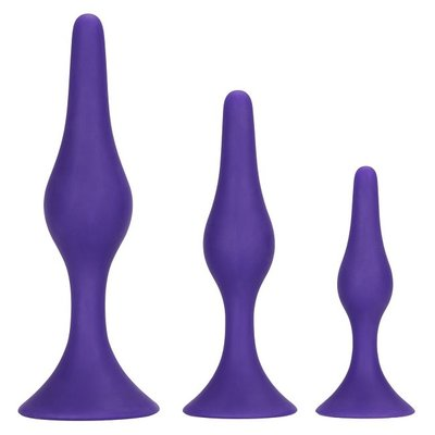 CalExotics Booty Call Booty Trainer Kit