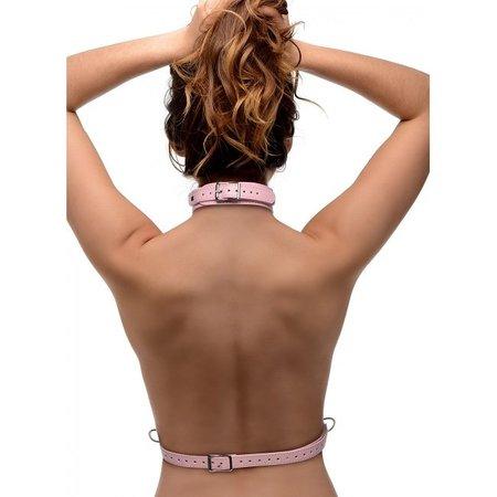 Frisky Frisky Miss Behaved Pink Chest Harness