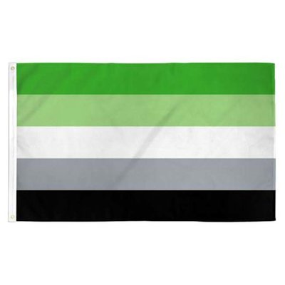Aromantic Pride Flag 3ft x 5ft