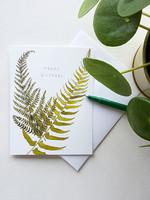 Happy Birthday Ferns Card