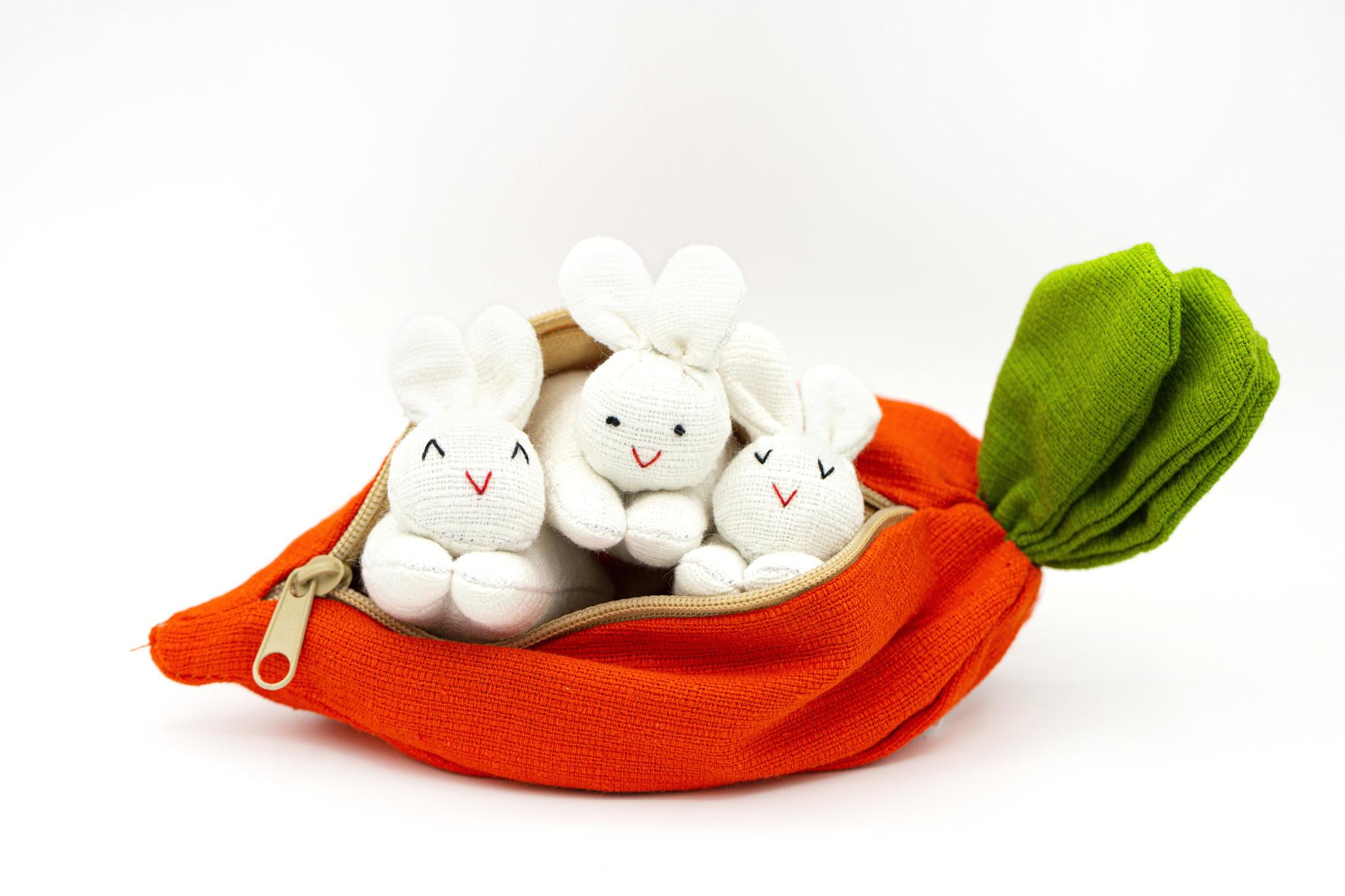 Rabbits in Carrot