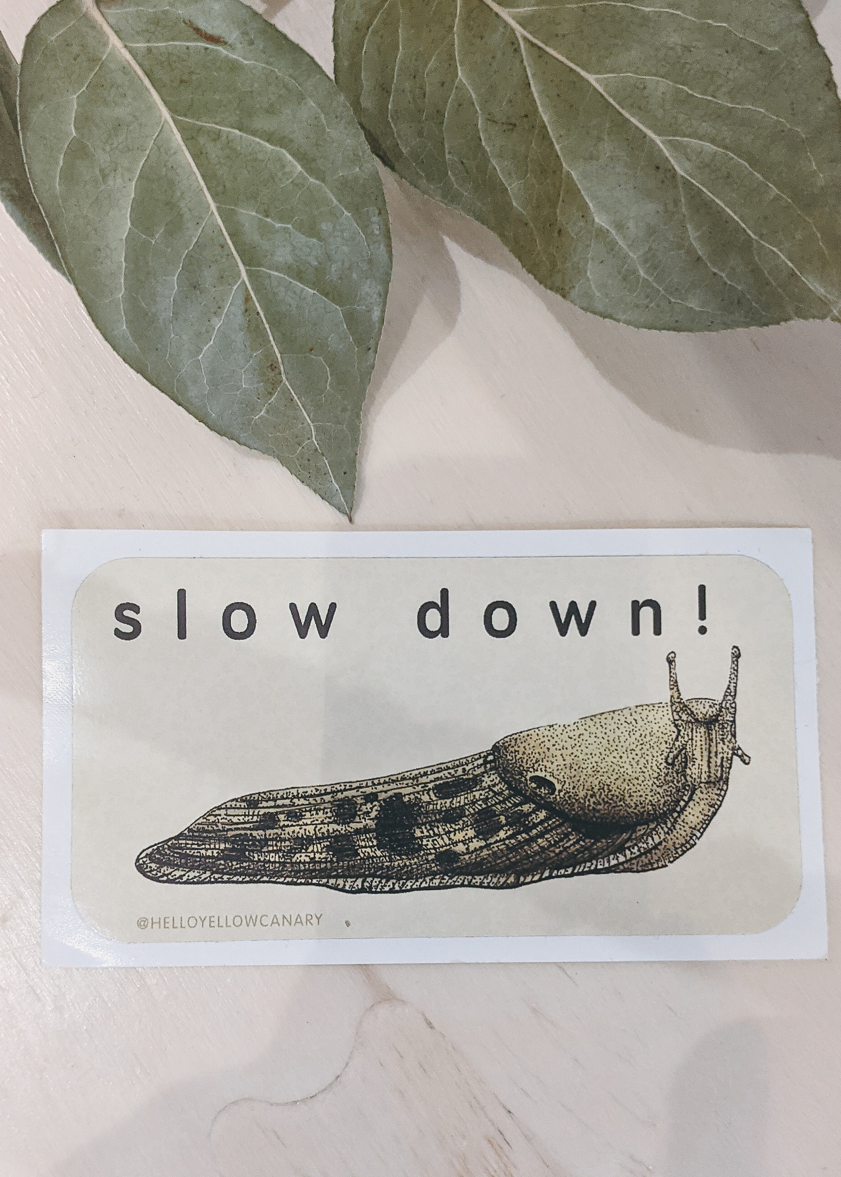 Hello Yellow Canary - Slow Down Sticker