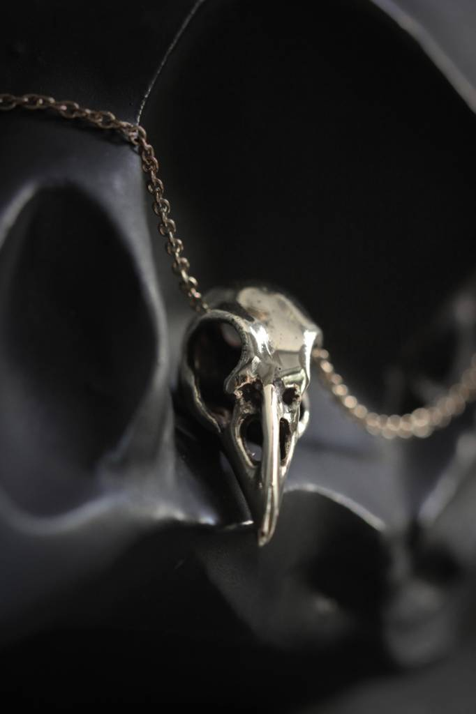 Silver Mix Raven Skull Necklace
