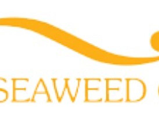 Bio Seaweed Gel