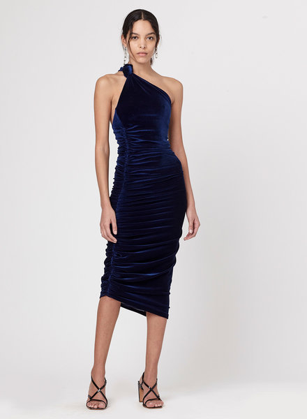 Alix NYC Celeste Velvet Dress