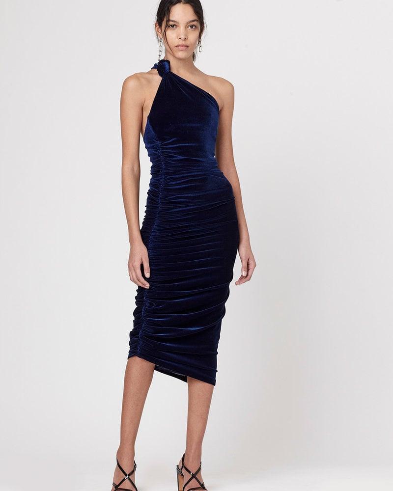 Alix NYC Celeste Velvet Dress