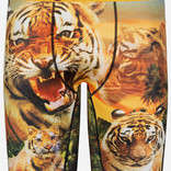 Ethika Ethika Easy Tiger Assorted