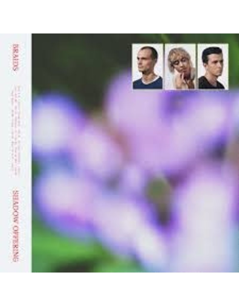 (CD) Braids - Shadow Offering