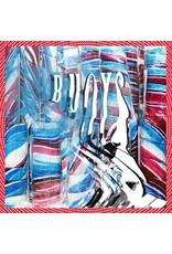 (CD) Panda Bear - Buoys