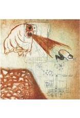 (CD) Deerhoof - Future Teenage Cave Artists