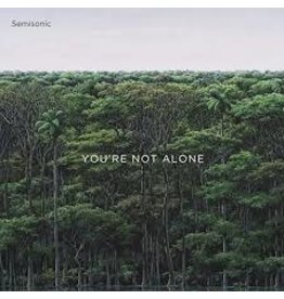 (LP) Semisonic - You're Not Alone