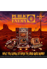 (CD) Public Enemy - What You Gonna Do When The Grid Goes Down