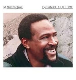 (LP) Marvin Gaye - Dream of A Lifetime