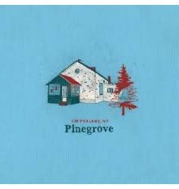 (LP) Pinegrove - Amperland, NY (2LP)
