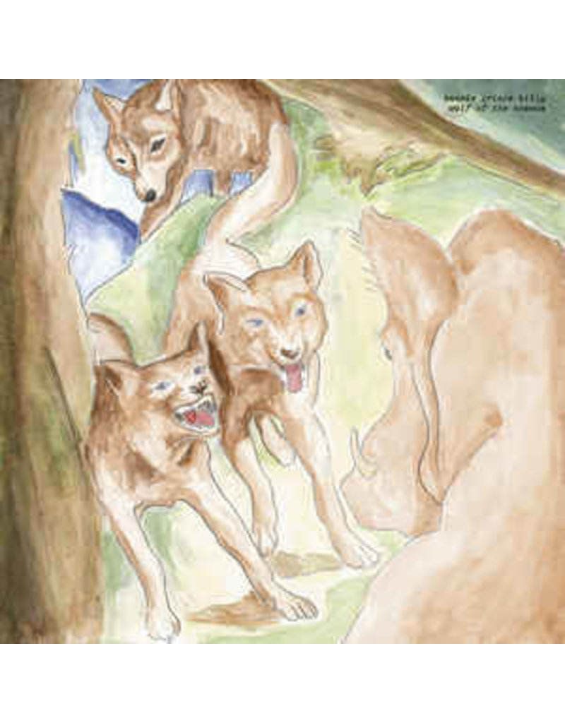 (CD) Bonnie Prince Billy  - Wolf Of The Cosmos