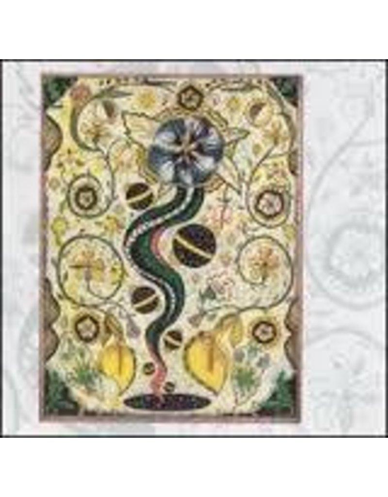 (LP) Steve Earle - I Feel Alright (180g) (DIS)