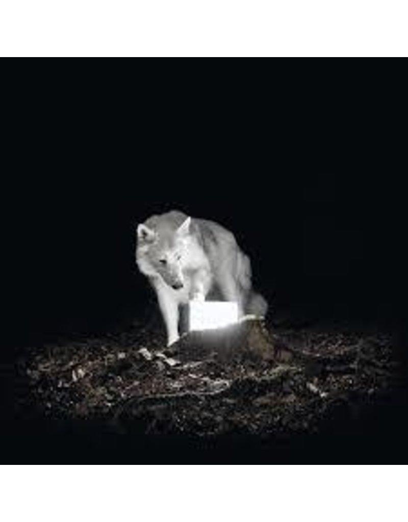 (LP) Vanishing Life - Surveilance (White Vinyl)