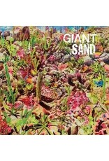 (CD) Giant Sand - Returns To Valley Of Rain