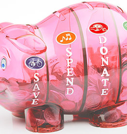 Money Savvy Money Savvy Bank/ Pink