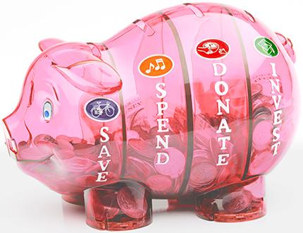 Money Savvy Money Savvy Bank/ Pink