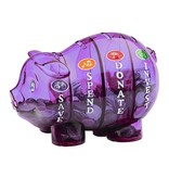 Money Savvy Money Savvy Bank/ Purple