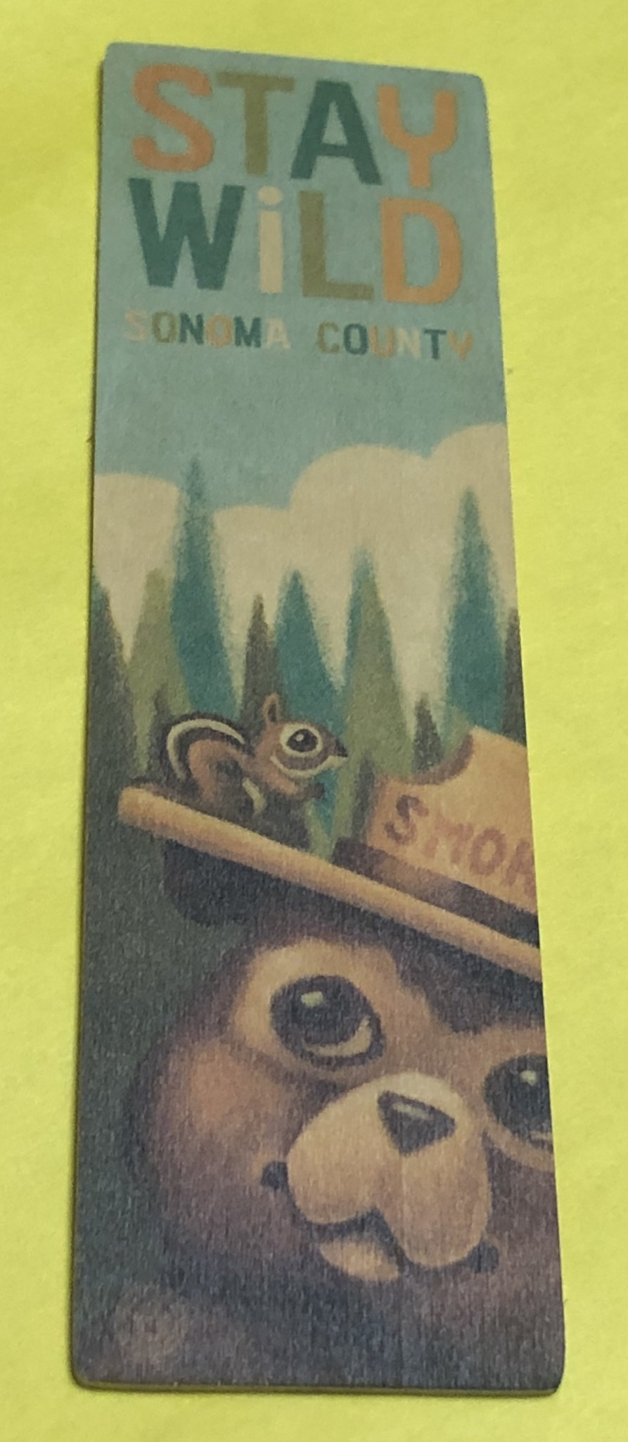 Lantern Press Wooden Bookmark / Smokey the Bear and Squirrel