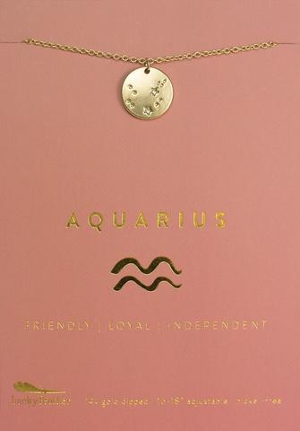 Lucky Feather Necklace / Zodiac Aquarius