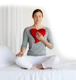 Bucky Inc./Design Imports Heart Warmer Pillow