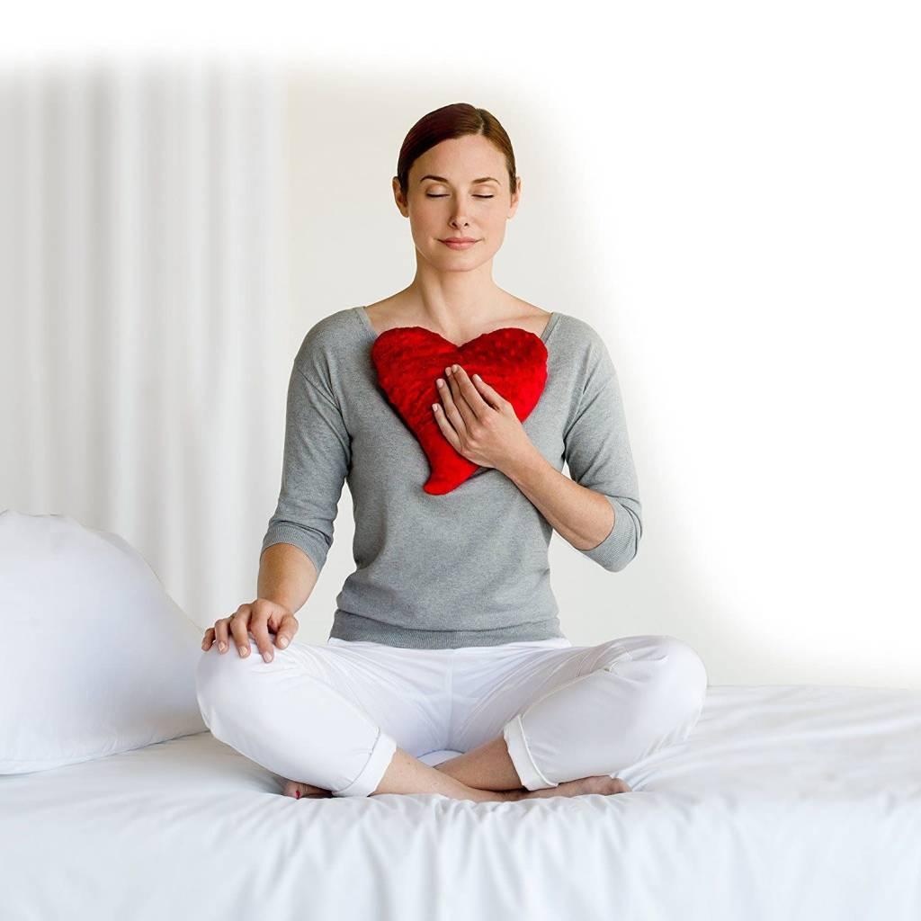 Bucky Inc./Design Imports HeartWarmer Pillow