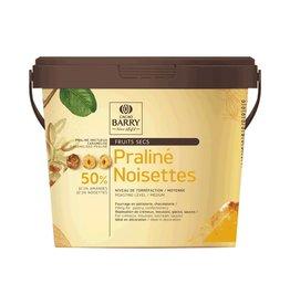 Cacao Barry Cacao Barry - Hazelnut Praline 50% - 5kg/11 lb, PRN-HA50CBY-T60