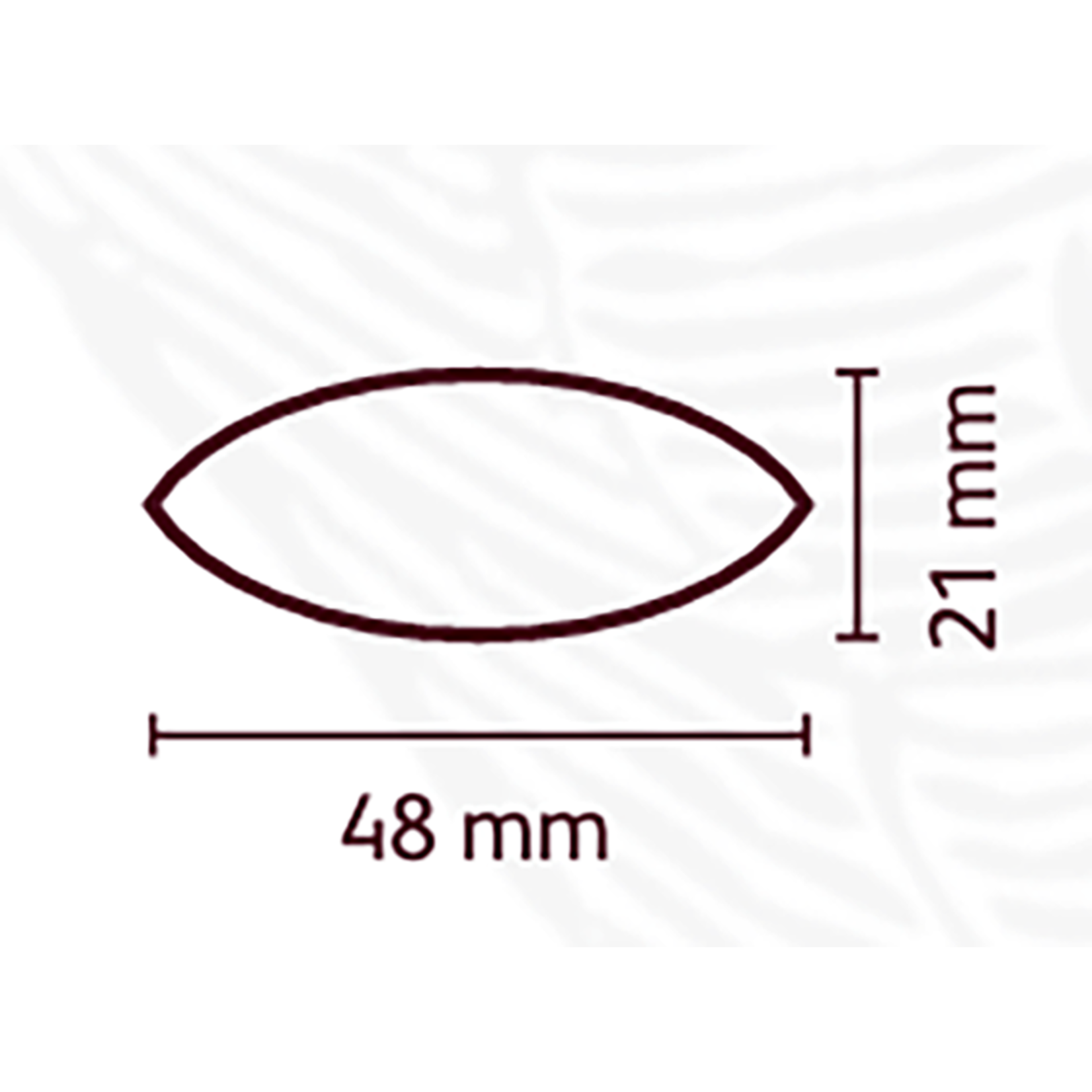 Cacao Barry Cacao Barry - Tritan Chocolate Mold - Cocoa Pod (24 cavity), MLD-090524-M00