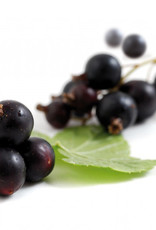 La Fruitiere Le Fruitiere - IQF, Black Currants - 2.2lb