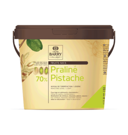 Cacao Barry Cacao Barry - Pistachio Praline Paste 70% - 1kg/2.2 lb, PRO-PI701BY-19A