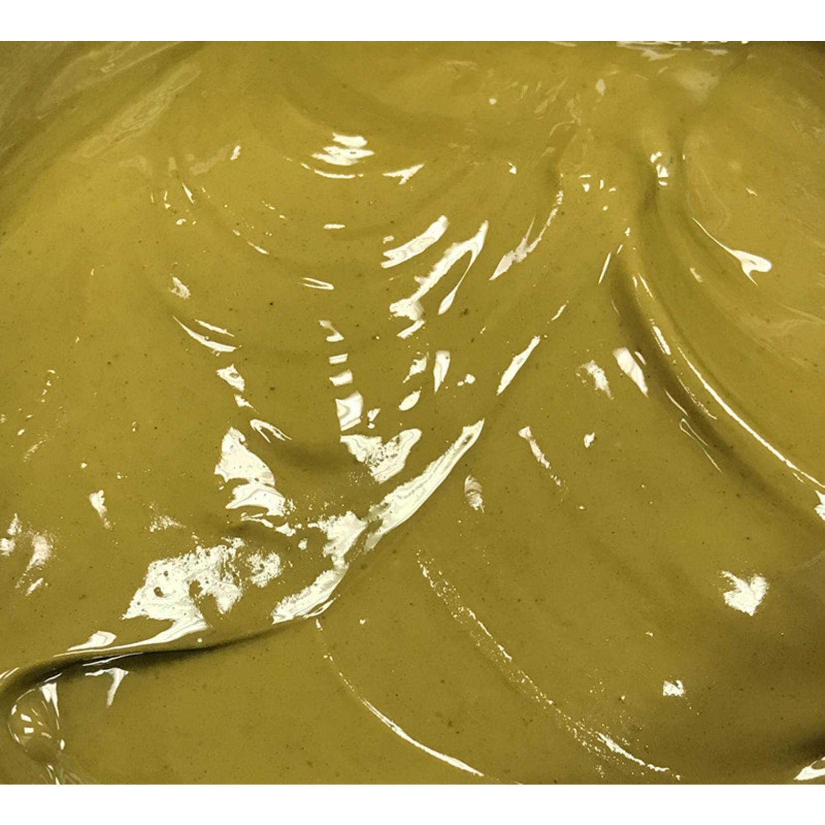 Cacao Barry Cacao Barry - Pistachio Praline Paste 70% - 1kg/2.2 lb, PRO-PI701BY-19A