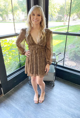 Miley Leopard Dress
