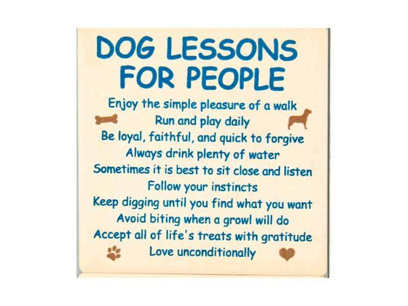 DOG SPEAK DOG SPEAK ABSORBENT STONE COASTER DOG LESSONS FOR PEOPLE