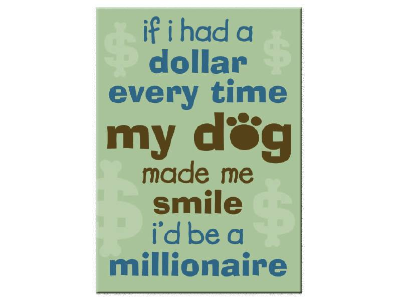 DOG SPEAK DOG SPEAK MAGNET IF I HAD A DOLLAR EVERY TIME MY DOG MADE ME SMILE I'D BE A MILLIONAIRE