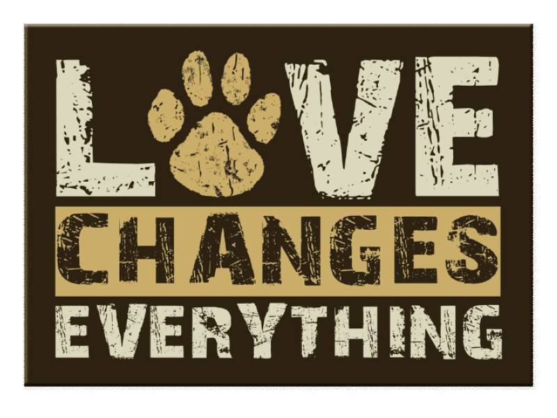 DOG SPEAK DOG SPEAK MAGNET LOVE CHANGES EVERYTHING