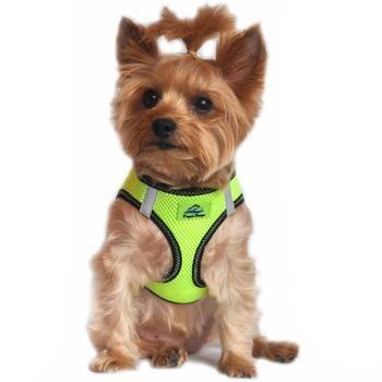 Doggie Design DOGGIE DESIGN AMERICAN RIVER HARNESS IRIDESCENT GREEN