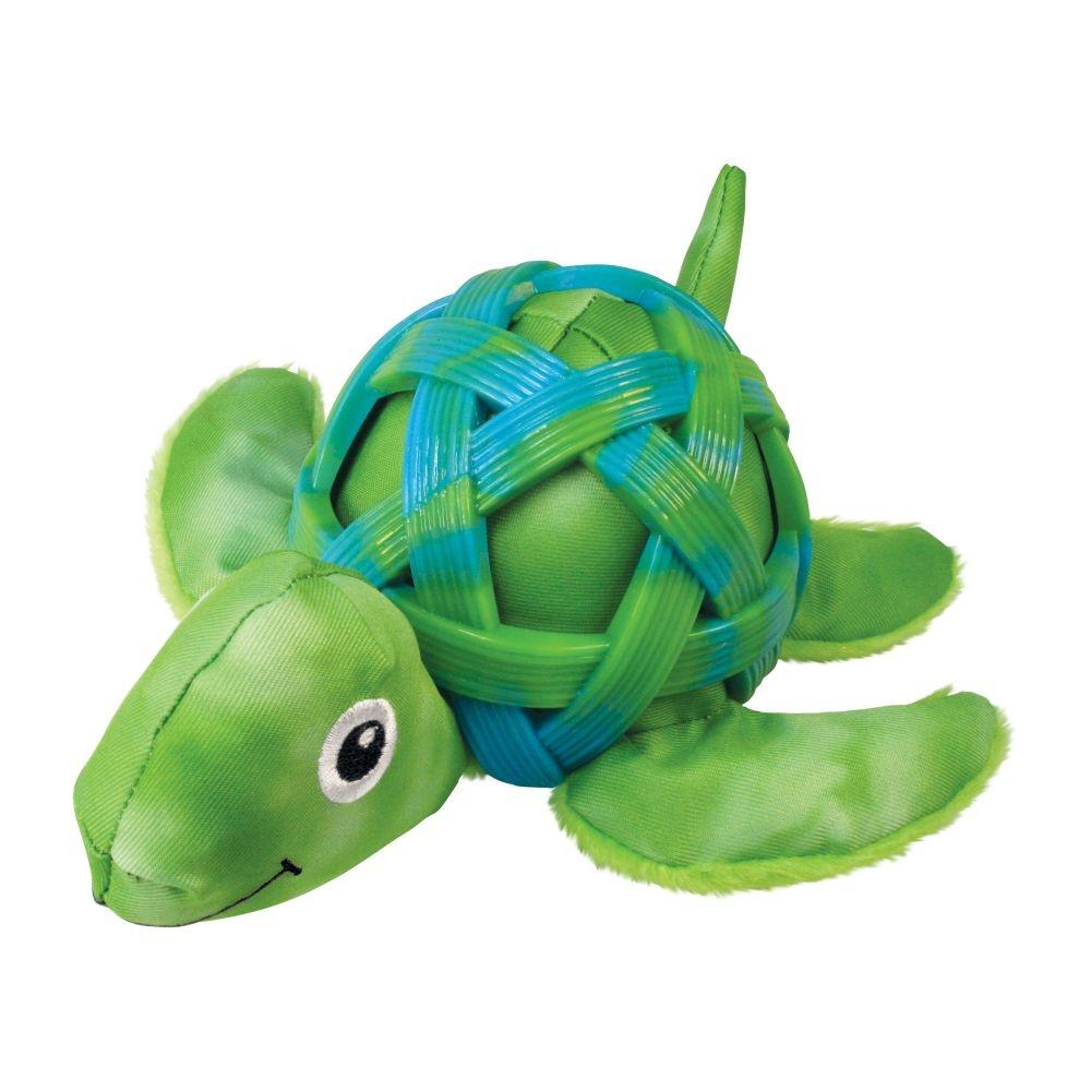 Kong Kong Sea Shell Turtle