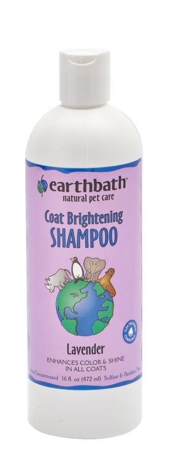 Earthbath Earthbath Coat Brightening Shampoo Lavender 16oz