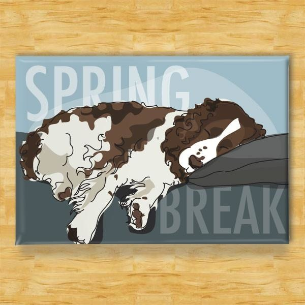 Pop Doggie Pop Doggie Red & White Springer Spaniel Magnet, Spring Break